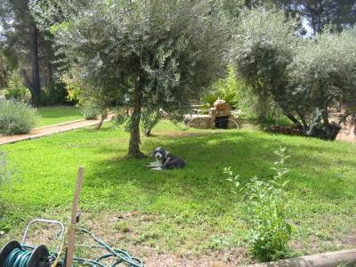 demeure locations de vacances Le Castellet 83330